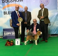 Best in show: Basic Drive's Dancer (Max)