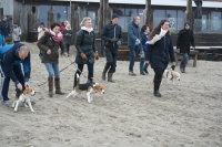 15e Big Beaglewalk IJmuiden 21 februari 2016